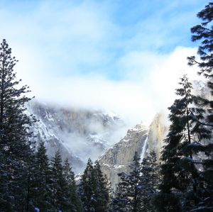Yosemite Falls with Trees