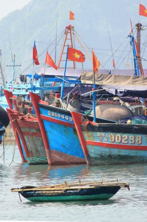 Vietnamese Fishing Boats (near Haiphong Harbor)