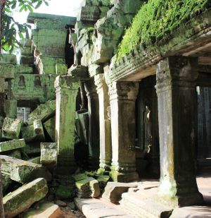 Moss on Ta Prohm